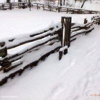 Огород зимой :: Виктор Николенко