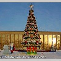 Новогодний городок :: Наталья Золотых-Сибирская