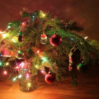 Рождество :: Виктория Минаева