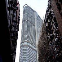 Гонконг -Новое стремиться ввысь :: михаил кибирев
