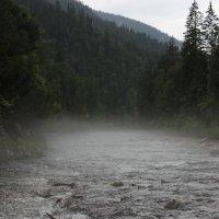 туман :: Алексей Тедеев