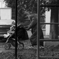 Беги, бабушка, беги :: Евгений Савельев