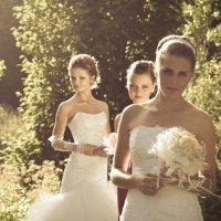 Невесты :: Олег Загорулько