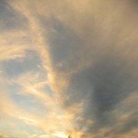 Вечернее небо :: Роман Снегов