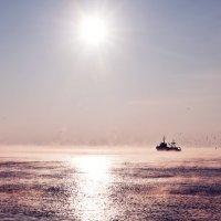 Baltic :: Ольга Муравьева