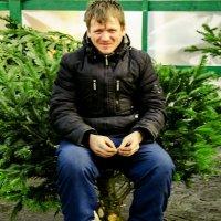 Король Ёлок на троне! :: Александр Барышев