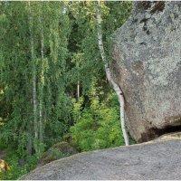 Скальный пейзажный парк Монрепо :: Photo Adventure