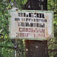 ? >  ! :: Юрий Вовк
