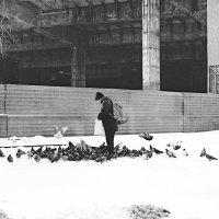 Дед и голуби... :: Frol Polevoy
