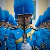 Army of lovers :: Evgeny Saukov