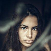 Алиса!!! :: Михаил Кузнецов