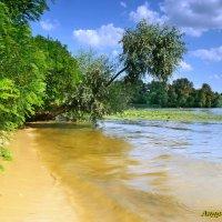 остров на реке Десёнка..... Киев :: Андрей Зелёный