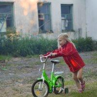 Ураа ,велосипед мой!!! :: Толеронок Анна