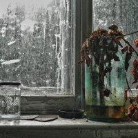 "Nature morte - значит ""мертвая природа"" :: Светлана Игнатьева"