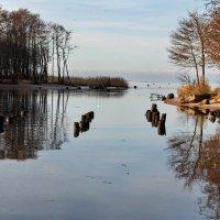 Осень на воде :: Николай Танаев
