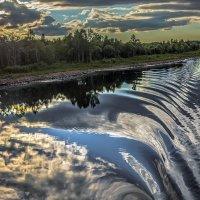 Потревоженное зеркало :: Valeriy Piterskiy