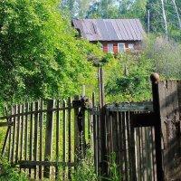 Домик в лесу :: Галина Стрельченя