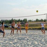 Пляжный волейбол :: Николай Варламов