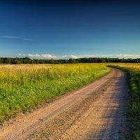 Деревенская дорога :: Дима Хессе
