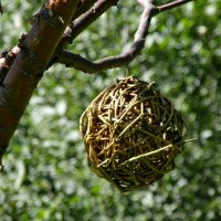 пролетая над гнездом... :: Наталья Бридигина