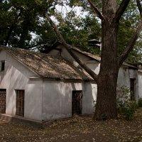 Старый домик. :: Яков Реймер