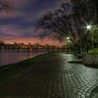 В ночном парке. :: Эдуард Пиолий