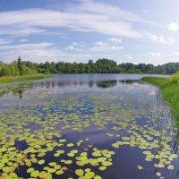 Ильинское озеро :: Валерий Талашов