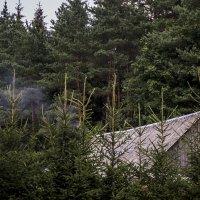 А над крышей дым клубами, значит кто то топит баню. :: juriy luskin