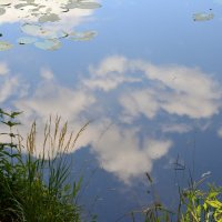 В реку смотрятся облака... :: Ольга Русанова (olg-rusanowa2010)