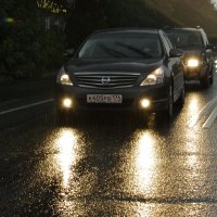 дождь :: Мария Мариевская