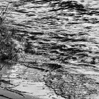 На берегу этой тихой реки... :: Alexandr Zykov