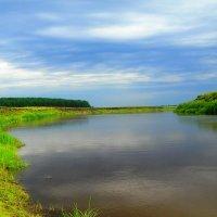 Река Ница :: Геннадий Ячменев