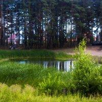 Озеро :: Валерия Задкова