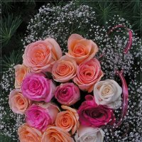 Дарите женщинам цветы. :: Татьяна и Александр Акатов