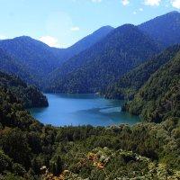 Озеро Рица :: Наталья Трифонова