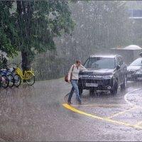 Прогулка под дождем. :: Vadim WadimS67