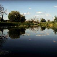 Красивая река. :: Ольга Кривых