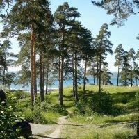 Тропинка к озеру Тургояк :: натальябонд бондаренко