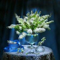 Я дарю Вам весну... :: Валентина Колова