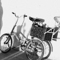 Велосипед :: Ольга Пушистова