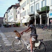 Дама с собачкой :: Лина Пушок