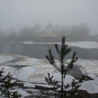 Важины, Воскресенская церковь, 1630. р. Важинка. Туман :: Елена Павлова (Смолова)