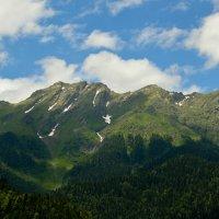 Горы Абхазии :: Bumbic 88