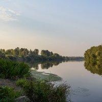 Утро на реке! :: Юрий Стародубцев