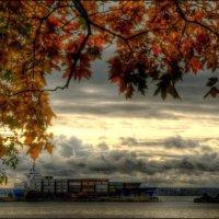 осень на рейде.. :: tipchik