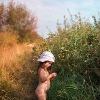 В зарослях шиповника :: Альберт Ханбиков
