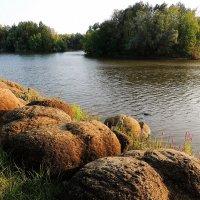 Берег пруда...В парке камней... :: Татьяна