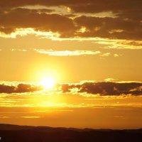 Ночное солнце :: Роман Маркин