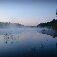 рыбалка на рассвете :: Gannochka
