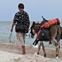 Будни пляжного фотографа. :: Татьяна и Александр Акатов